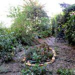 sfgardening.com profile image.