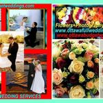 ANGELS PHOTOGRAPHY AND FULL WEDDING SERVICES profile image.