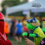 Barking Monkey Studio - Photography and Video Productions profile image.