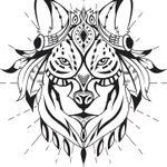 Miakoda Photography profile image.