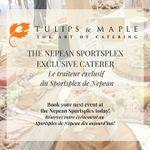 Tulips & Maple Inc. profile image.