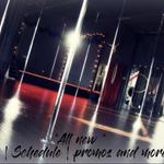 She Pole Dance Fitness Empowerment Studio profile image.