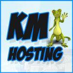 KM Hosting profile image.