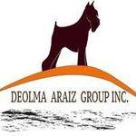 Deolma Web Services profile image.
