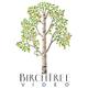 BirchTree Video logo