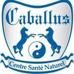 Conditionnement Caballus profile image.