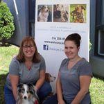 Astuces Canines - Éducation canine et dressage à Laval profile image.