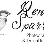Renee Sparrow Photography profile image.