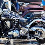Mr. Splash Miami profile image.