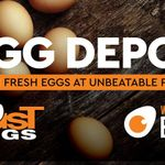 Egg Depot profile image.