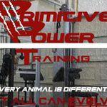 Primitive Power Training profile image.
