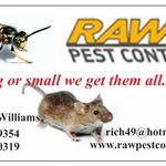 RAW Pest control profile image.