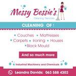 Messy Bessie's Cleaning Services profile image.