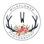 Wildflower Photography profile image.