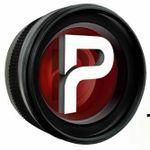 PANDAYS profile image.