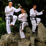 TKDB School of Martial Arts profile image.