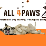 All 4Paws profile image.