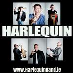Wedding Bands Ireland - Harlequin profile image.