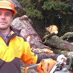 David Law Tree Care & Training profile image.