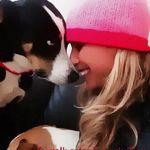 Randi-Dog trainer/ Behaviour Consultant/ Personalized Dog Walker profile image.