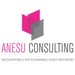 Anesu Tax & Accounting profile image.