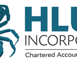 Hlubi Chartered Accountants profile image.