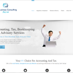 SNG Business Consulting profile image.