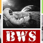 Bite Web Solutions profile image.