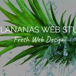 Koolananas Web Studio profile image.