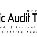 Strategic Audit Techniques Inc. profile image.