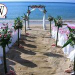 Weddings By Design profile image.