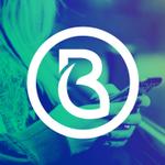 Brandmint Digital Marketing profile image.