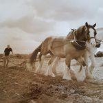 John Ironside Photography profile image.