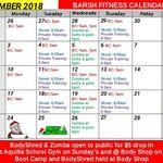 Barsh Fitness-Zumba, BodyShred & Boot Camp profile image.