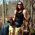 Randy Chartrand  Canadian Canine Trainer profile image.