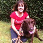 DogWalking.ie profile image.