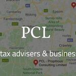 PCL - Propitious Consulting Limited profile image.