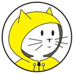 Anorak Cat Web Design LTD profile image.