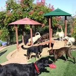 Canyon View Ranch profile image.