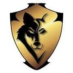 Black Wolf Locks and Security profile image.