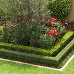 YZ Gardens profile image.