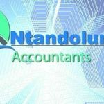 Ntandolungi Accountants profile image.