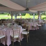 Cinderella Slip-Ons Chair Covers and Decor profile image.