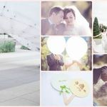 White Orchid Photography profile image.