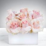 Funky Flower Shop profile image.