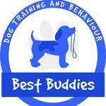 Best Buddies Dog Training profile image.
