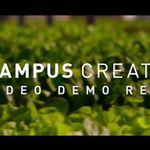 Campus Creative profile image.