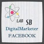 LAB SB Digital Marketer profile image.