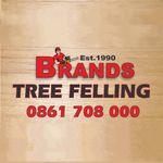 Brands Tree Felling profile image.