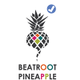 Beatroot Pineapple Marketing - PE logo